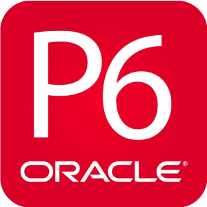 P6 Oracle logo